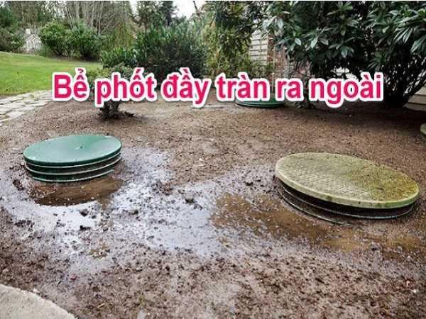 Bể phốt bị tràn ra ngoài gây ảnh hưởng lớn đến môi trường và con người